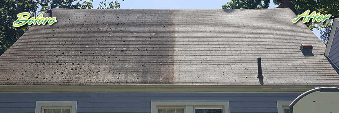 asphalt roof cleaning